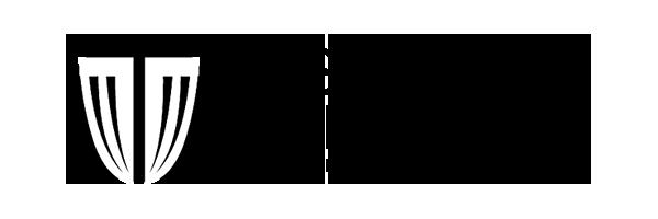 Disc Golf Solution Logo